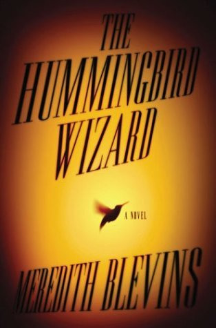 Image for The Hummingbird Wizard